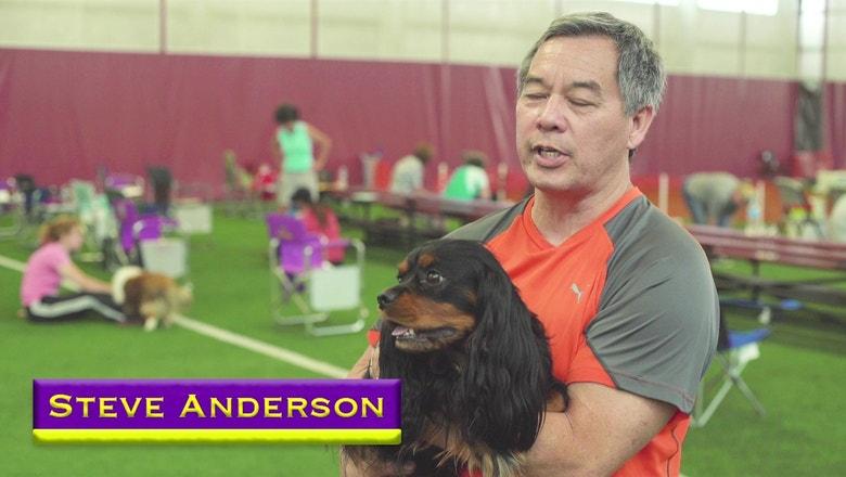 Owner Steven Anderson