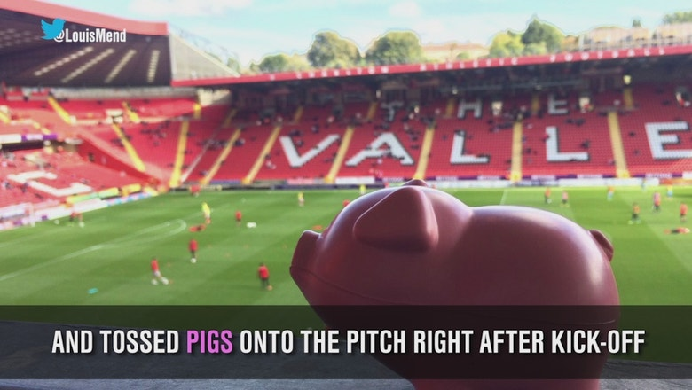 Fans in England threw plastic pigs to protest