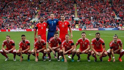Wales vs. Georgia (October 2016)