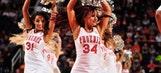NBA dancers: November