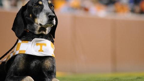 Smokey — Tennessee Volunteers