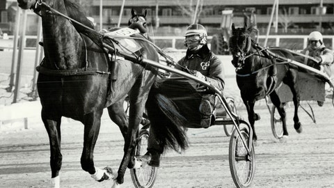 I watch replays of a harness horse I covered decades ago