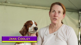 Road to Westminster (RTW): Owner Jana Cooley