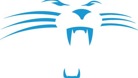 THE WORST // 25. Carolina Panthers* (1995-2011)