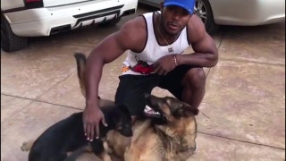 Yasiel Puig plays with his dogs | PROCast