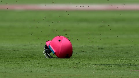 Bees swarm around an abandoned helmet as play is delayed during the 3rd One Day International cricket match between South Africa and Sri Lanka, at the Wanderers stadium in Johannesburg, South Africa, Saturday, Feb. 4, 2017. (AP Photo/Themba Hadebe)
