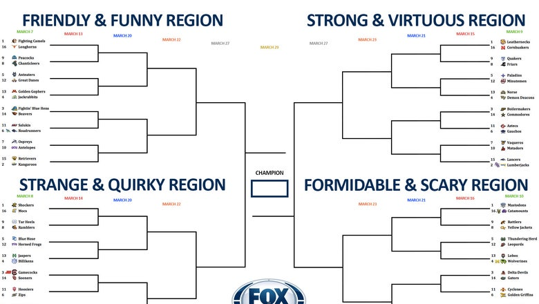 Best college team nickname bracket: Vote now in the opening round
