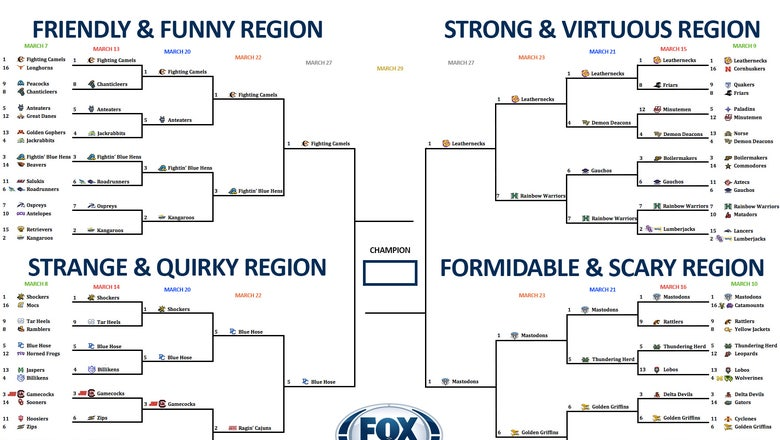 College basketball team nickname bracket: Vote now in the Final Four