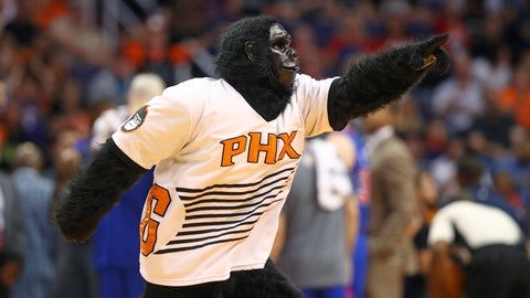 Phoenix Suns: The Gorilla