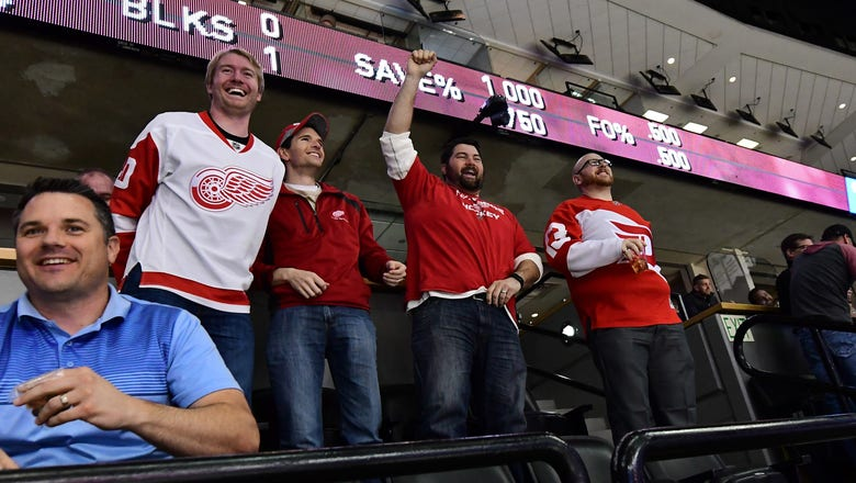 Detroit Red Wings Say Goodbye to the Joe
