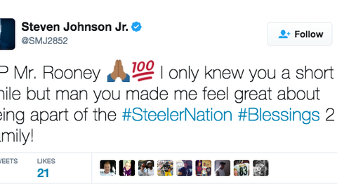 Steven Johnson, Steelers linebacker