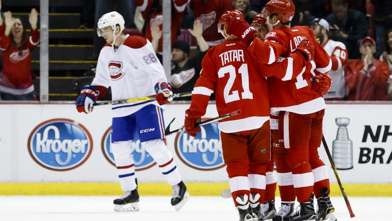 NHL Expansion Draft: Detroit Red Wings Protection Strategy