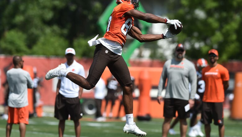 Cleveland Browns: Ricardo Louis poised for second-year jump