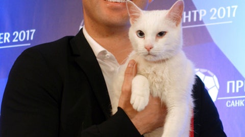 Russia unveils psychic cat ahead of Confederations Cup
