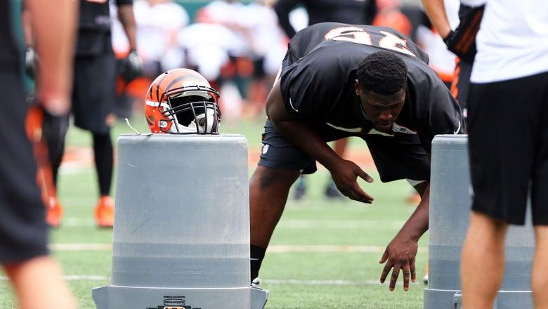 Cincinnati Bengals Zero-Snap Spotlight: Andrew Billings