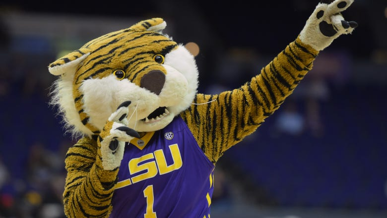 LSU Football: Students cite racism in petition to change Tiger mascot