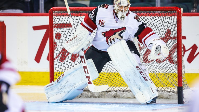 Arizona Coyotes and Calgary Flames Complete Massive Deal
