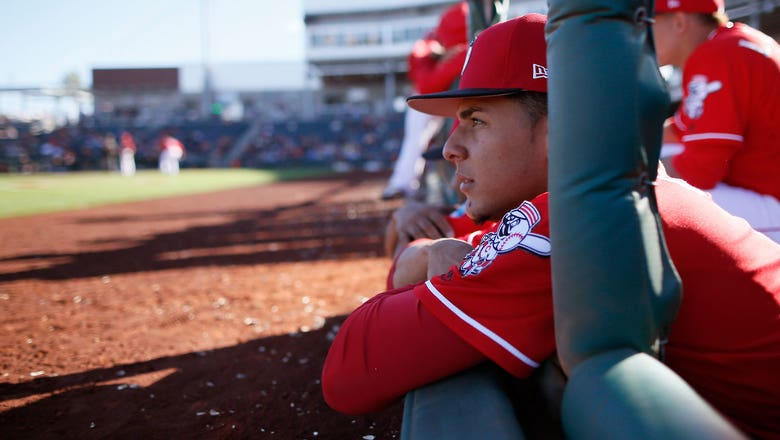 Reds bring up Luis Castillo to make first MLB start