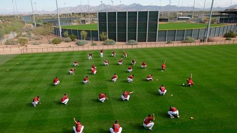 Diamondbacks spring training