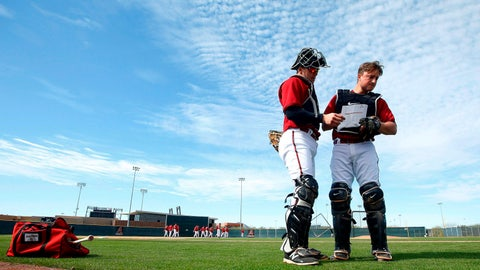 Diamondbacks spring training