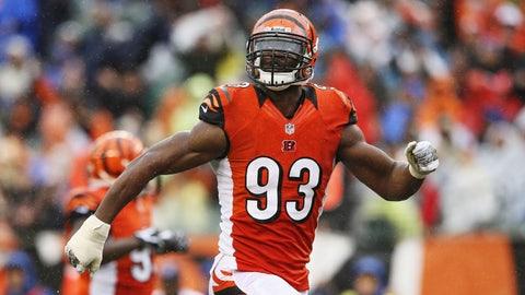 Cincinnati Bengals: Michael Johnson, DE