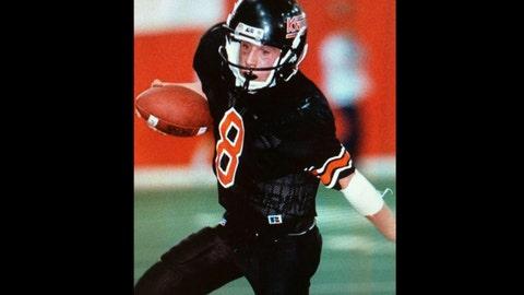 Chad Greenway, Vikings linebacker