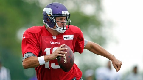 Shaun Hill (Minnesota Vikings)