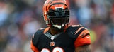 James Harrison released by Bengals