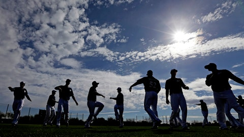 Brewers Spring Training 2015
