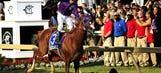 California Chrome tops 2014 Triple Crown memories