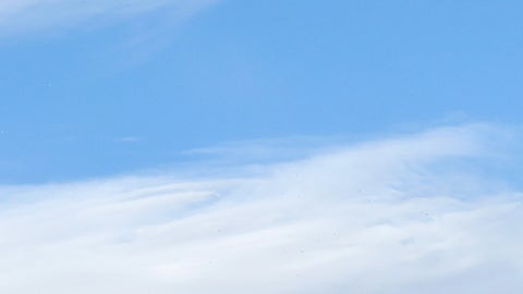 Caldwell takes flight