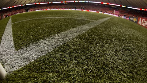 Will all the World Cup matches be grass or turf?