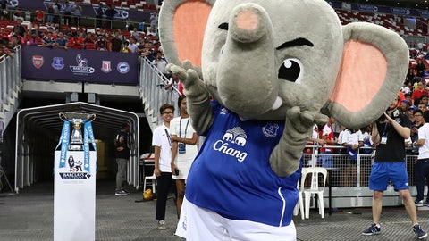 Changy the Elephant -- Everton