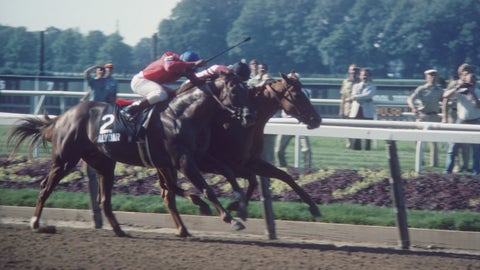 Affirmed vs. Alydar