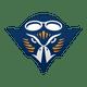 Skyhawks