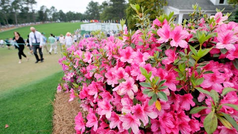 Augusta National isn't all about the green