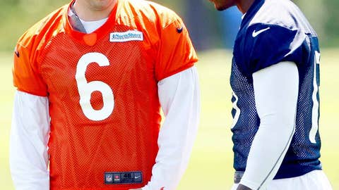 2. Cutler and Marshall