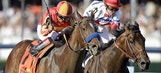 PHOTOS: Preakness race