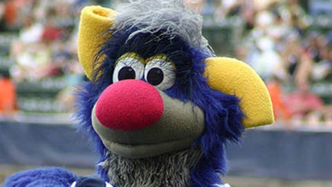 Champ, Yankees minor league mascot