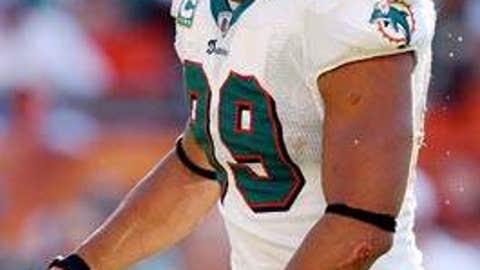 Jason Taylor, NFL defensive end