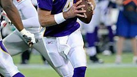 Minnesota Vikings (Brett Favre)