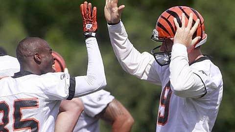 Cincinnati Bengals (Carson Palmer - right)