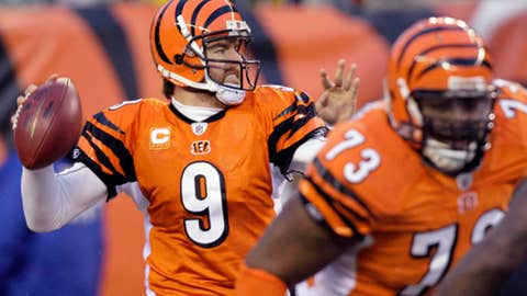 Carson Palmer and the Bengals