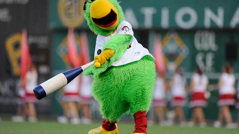 Pittsburgh Pirates: Pirate Parrot