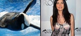 Orca meets ARCA: 'The Simpsons' co-creator is helping Leilani Munter get her 'Blackfish' car to Dega
