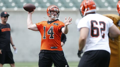 Cincinnati: Can the Bengals finally win a playoff game after three straight seasons of postseason disappointment?