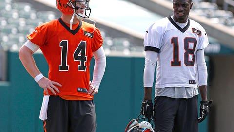 17. Cincinnati Bengals