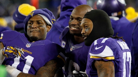 Minnesota Vikings Season in Review