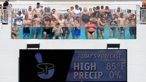 "Jacksonville Jaguars: ""Who peed in the pool?"""