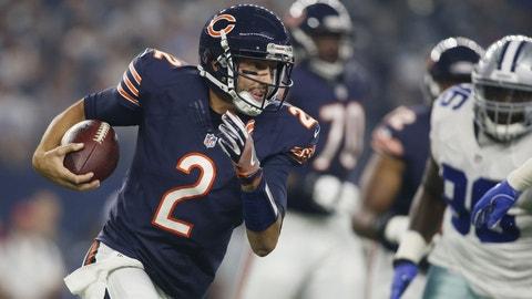 Brian Hoyer, Chicago Bears